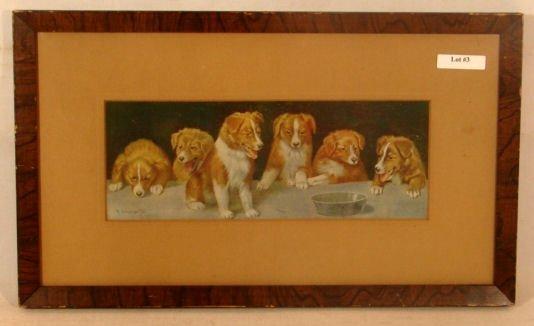 3: R Atkinson Fox - Too Late - Puppies