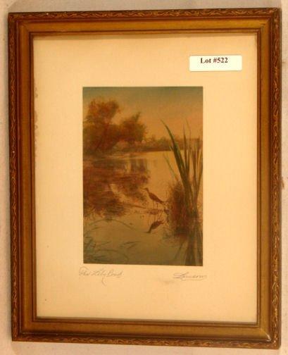 522: Lamson - The Lily Pond - Rare Bird