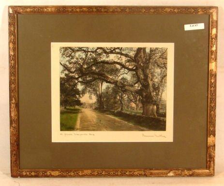 3: Wallace Nutting - A Great Wayside Oak