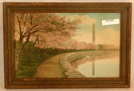 21: Carlock - Washington Monument