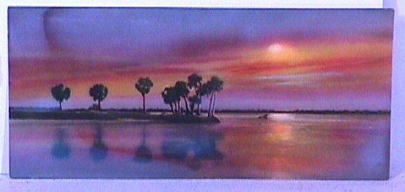 5: E.G. Barnhill - Florida Hand-Colored Photo