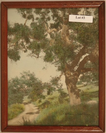 3: Wallace Nutting - The Hill Road Oak