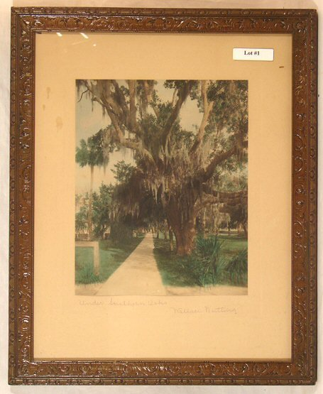 1: Wallace Nutting - Under Southern Oaks - Florida