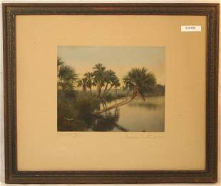 Wallace Nutting - Palmetto Grace - Florida