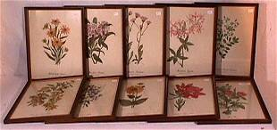 Lot of 10 Smithsonian Floral Prints