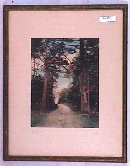 556: Lamson Studios - Thru the Pines