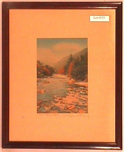 513: Wallace Nutting - Mountain Born