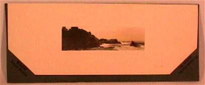 668: Fred Thompson - Seascape - Rare TACO Packaging
