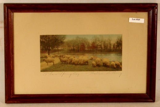 569: Wallace Nutting - A Warm Spring Day - Sheep