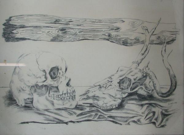 4: Bones (cow skull-human skull)