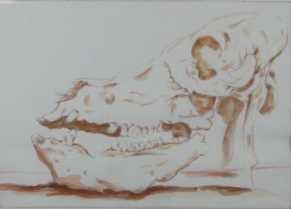 22: Ape Skull