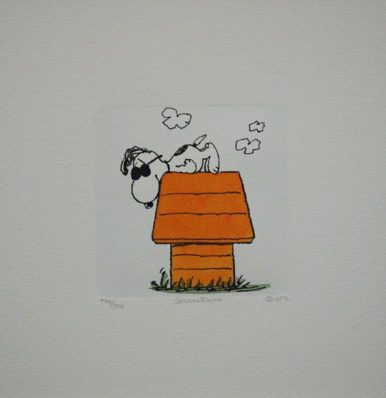 Cool Snoopy on Doghouse by Sowa & Reiser - Hand Colored