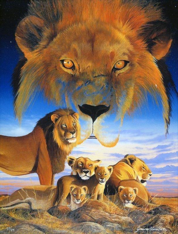Masai Morning by Graeme Stevenson - Giclee on Paper -