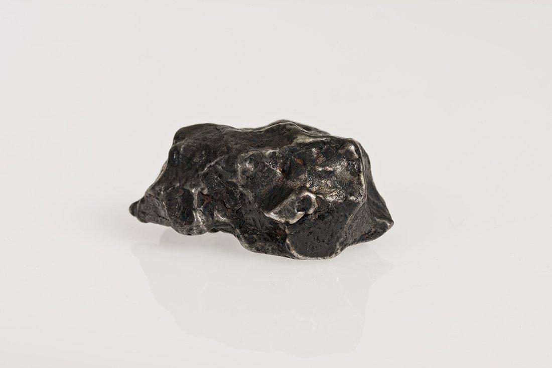 Palm-Sized Meteorite - Sikhote-Alin