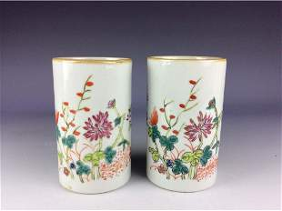 Pair of Chinese porcleian vase famille rose glaze