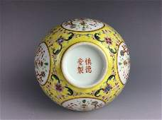 Fine & rare Chinese porcelain vase, famille rose with