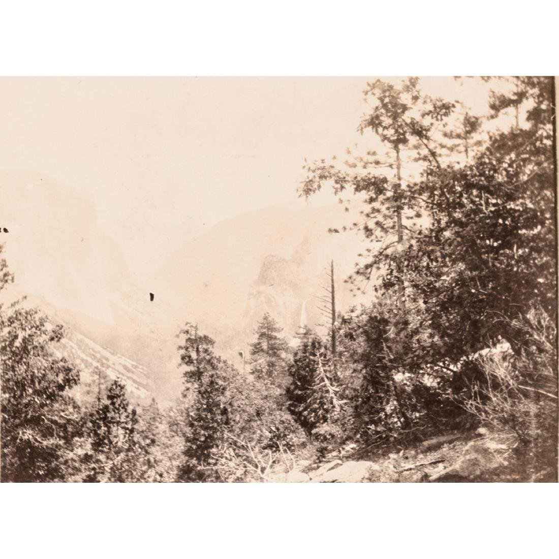 1882 Album 25 Historical Yosemite Calif. Photos - 10