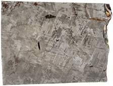 370 Gibeon IronNickel Meteorite Slice Africa
