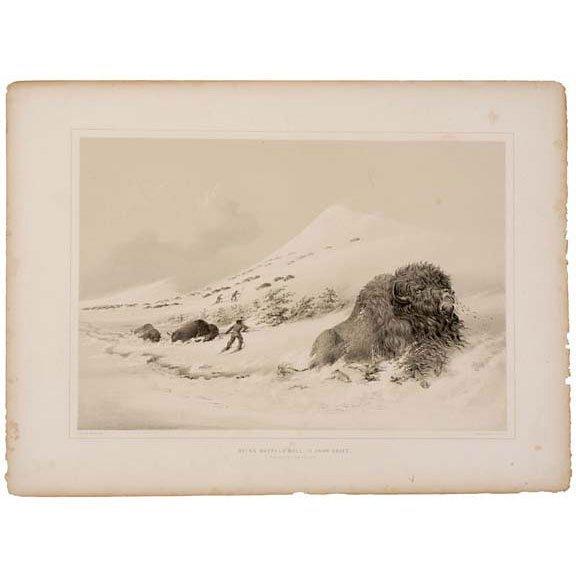 Lot 272: c.1860 Book Catlin Indian portfolio