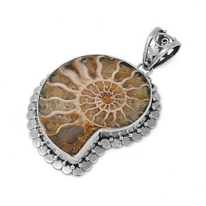Sterling Silver Pendant W/ Fossilized Snail Shell