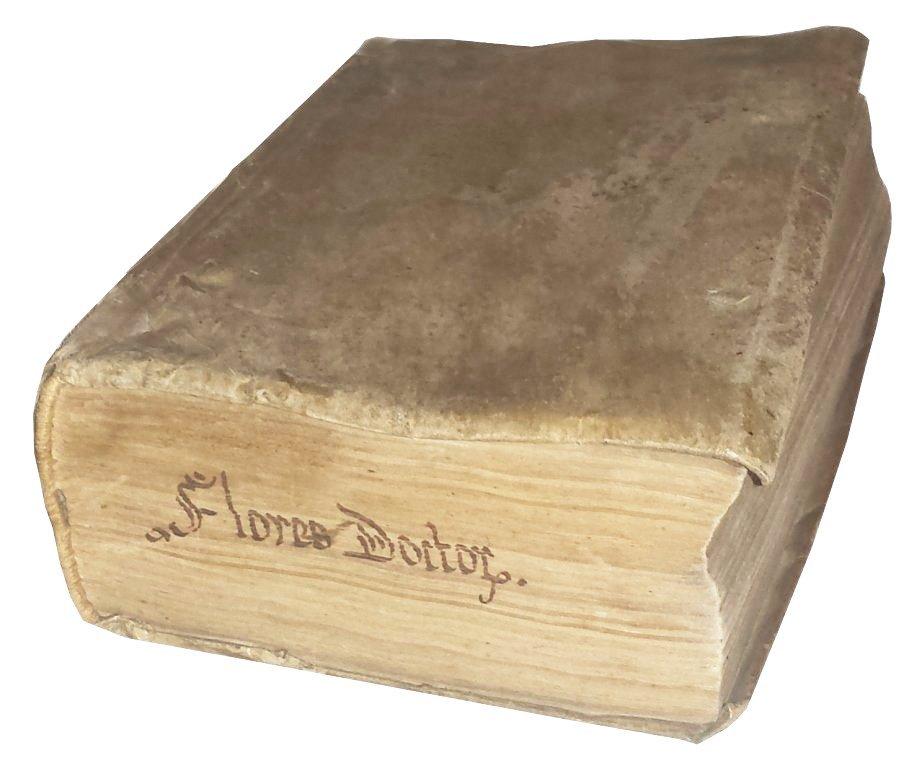 [Philosophy and Theology, Anthology] Hibernicus, 1576 - 2