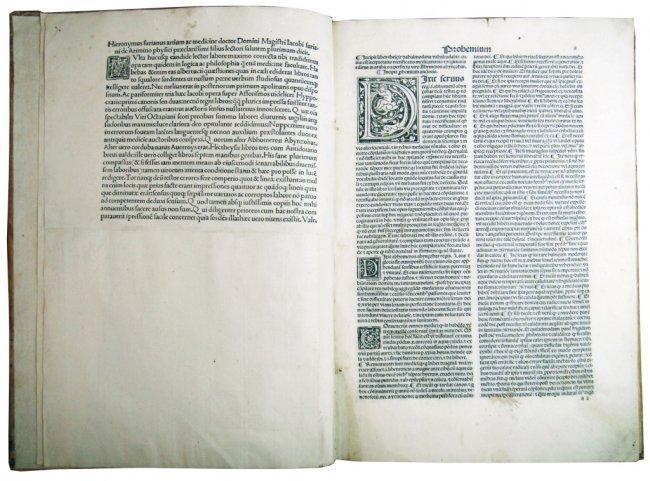 [Arabic Medicine] Abynzohar (Ibn Zuhr), Al-Taysir, 1496