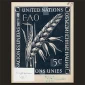 1145: UN Approved Drawing by Dirk Van Gelder