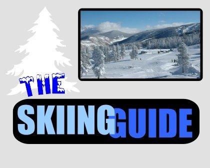 The Skiing Guide - Domain Name