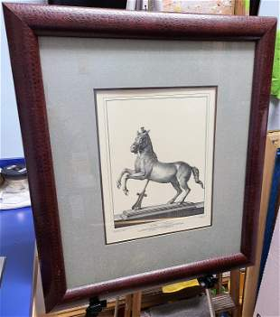 Nolli antique horse framed print