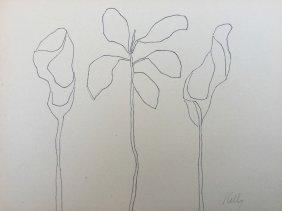 Kelly Ellsworth Drawing