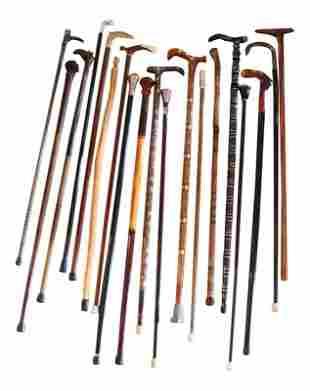 19 Walking Canes