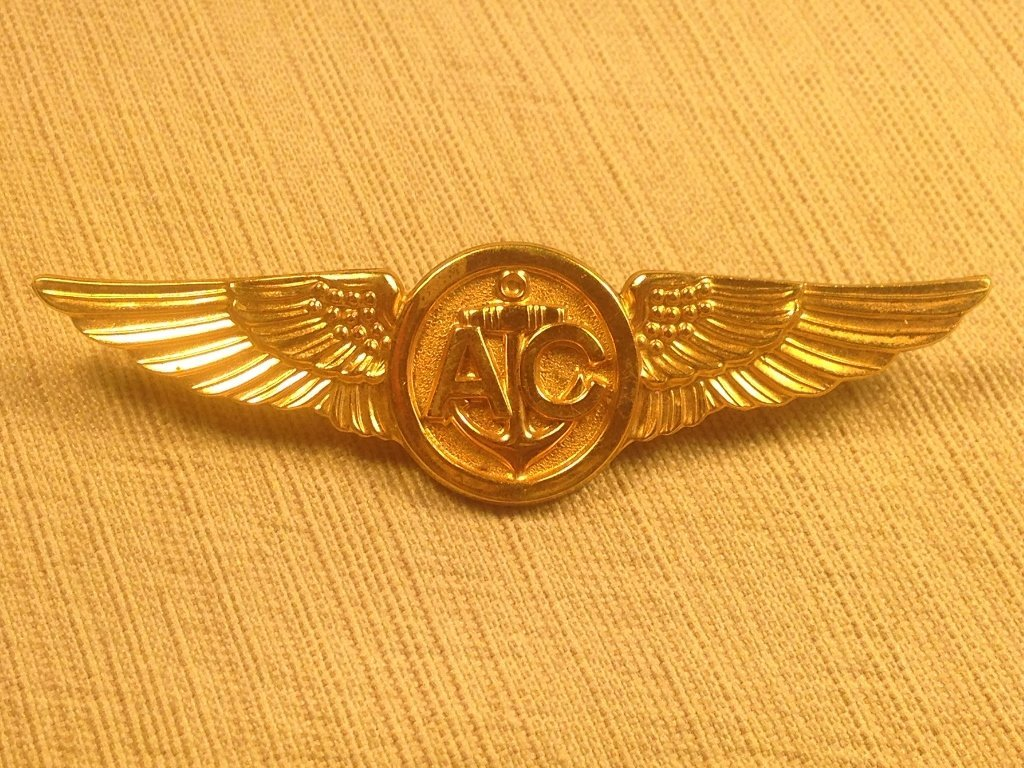 Vanguard Navy Pilot Wings Air Crew Cluth Back