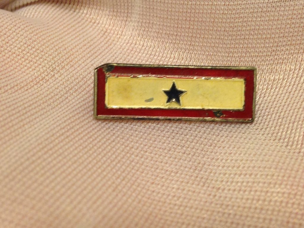 WW2 1 Inch Mother's Star Sterling Pin