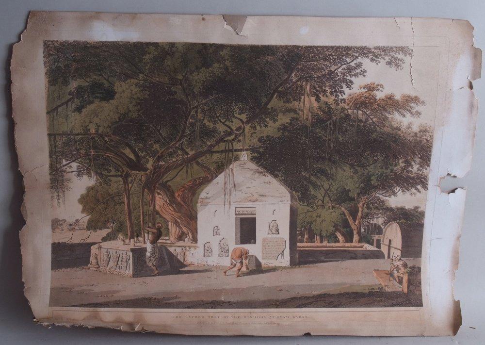 Thomas Daniell (1749-1840) 'The Sacred Tree', hand