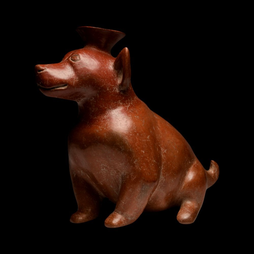 Pre-Columbian Colima Redware Seated Dog - 2