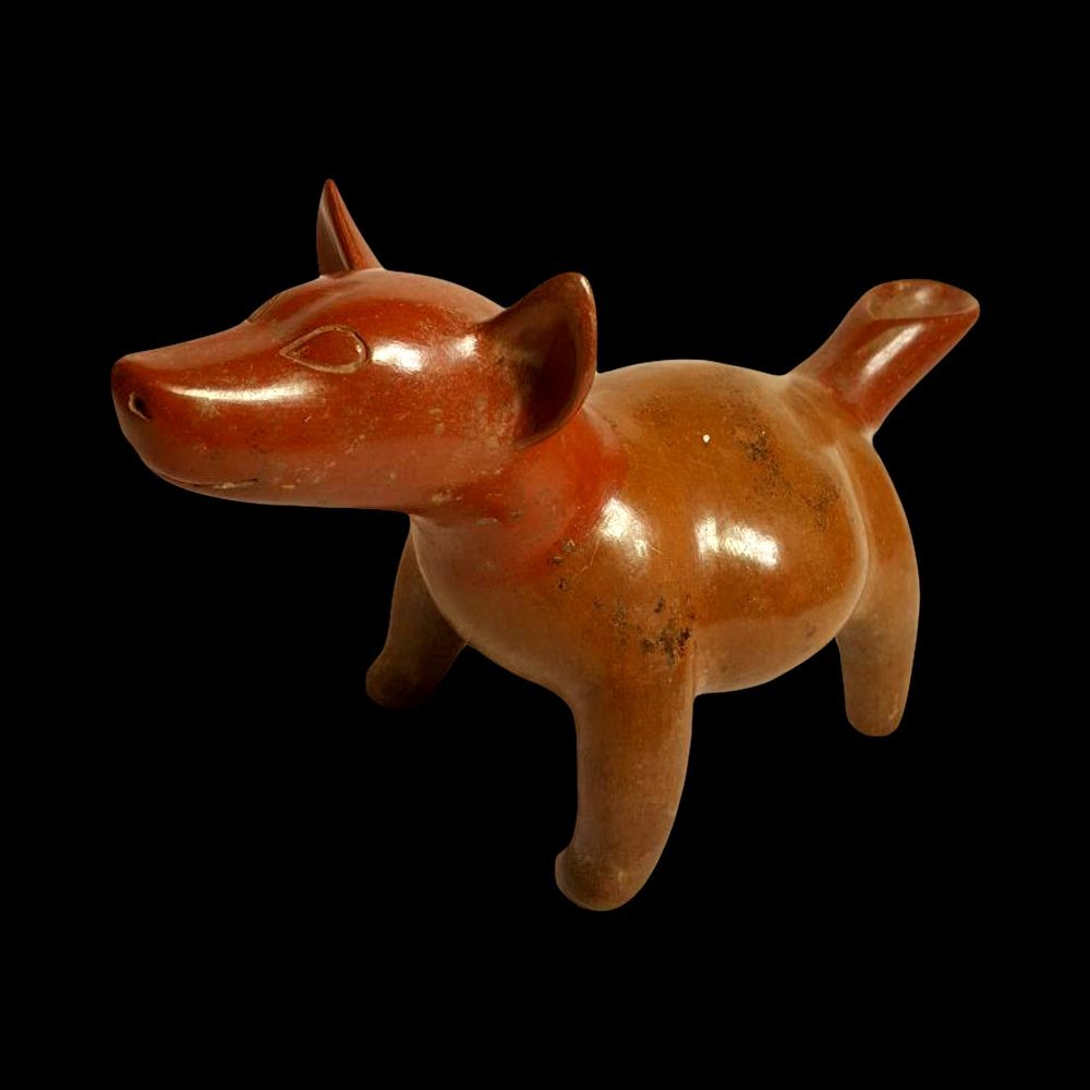 Pre-Columbian Colima Pottery Dog