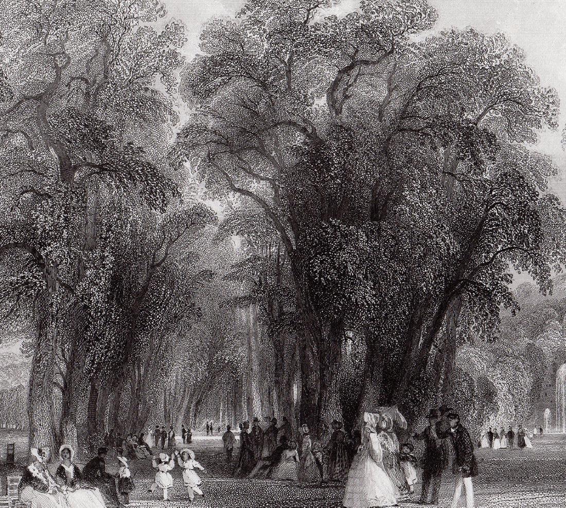 Thomas Allom  The Park at St. Cloud engraving - 3