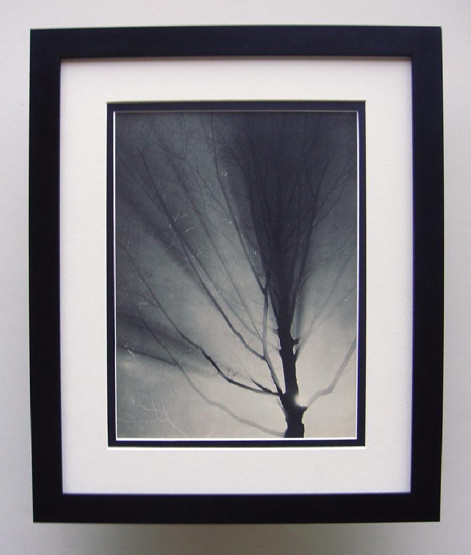 1930's Brassai Composition Framed Photogravure