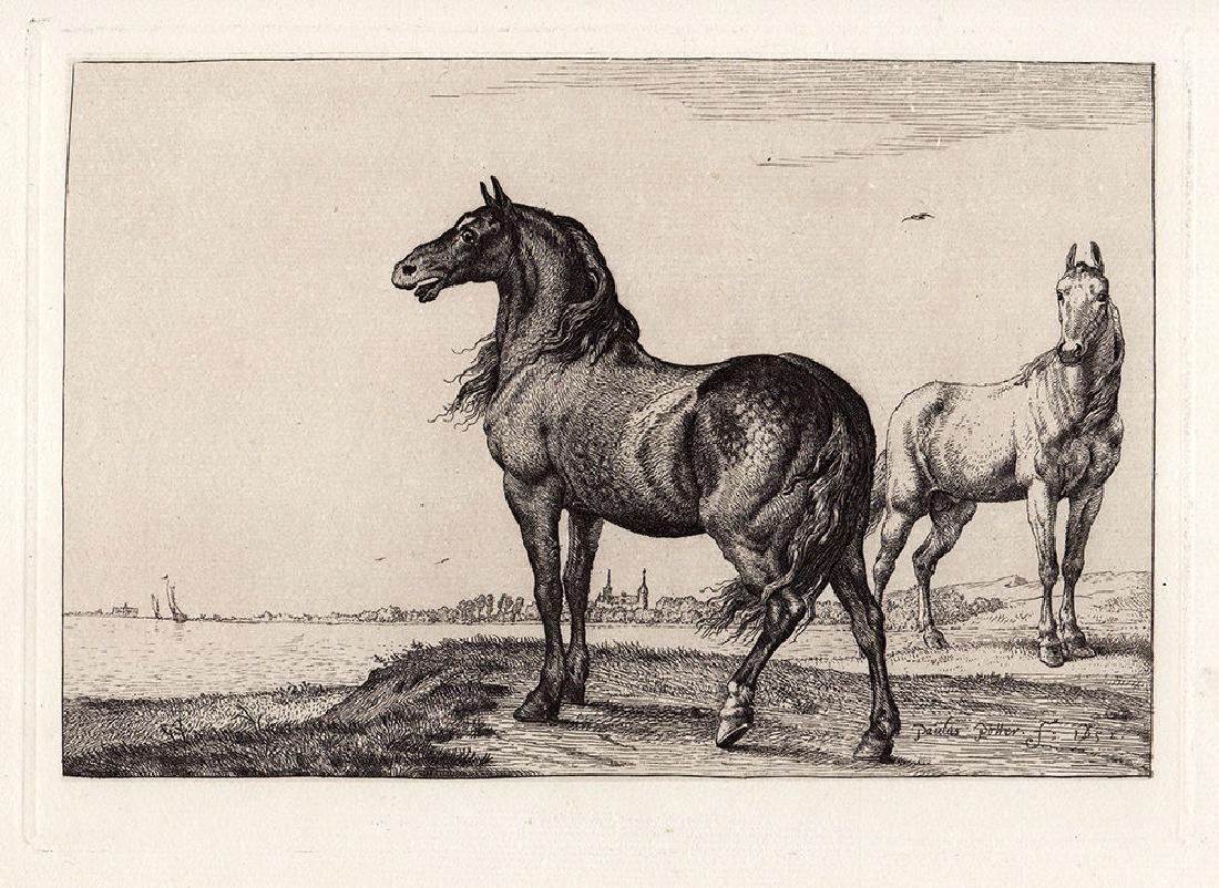 Paulus Potter Neighing Horse Etching Durand - 2