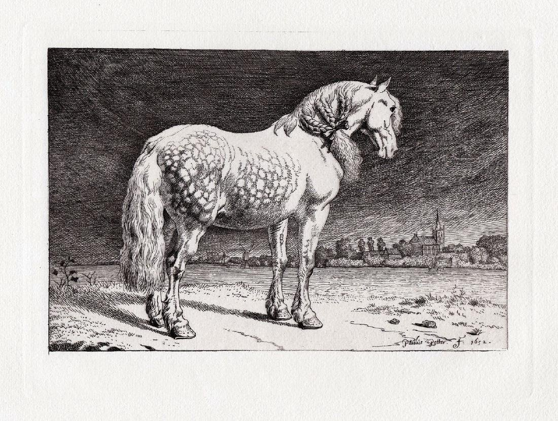 Paul Potter The Friesland Horse Etching Durand - 2