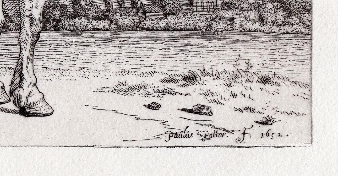 Paul Potter The Friesland Horse Etching Durand - 3
