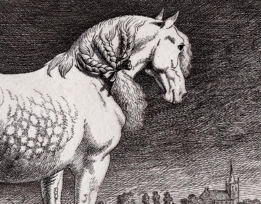 Paul Potter The Friesland Horse Etching Durand - 4