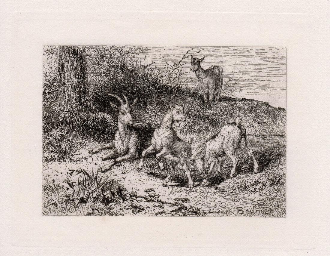 1872 Karl Bodmer Kids etching signed
