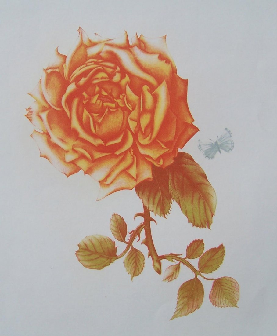 Martha Purdy Tea Rose etching Signed numbered