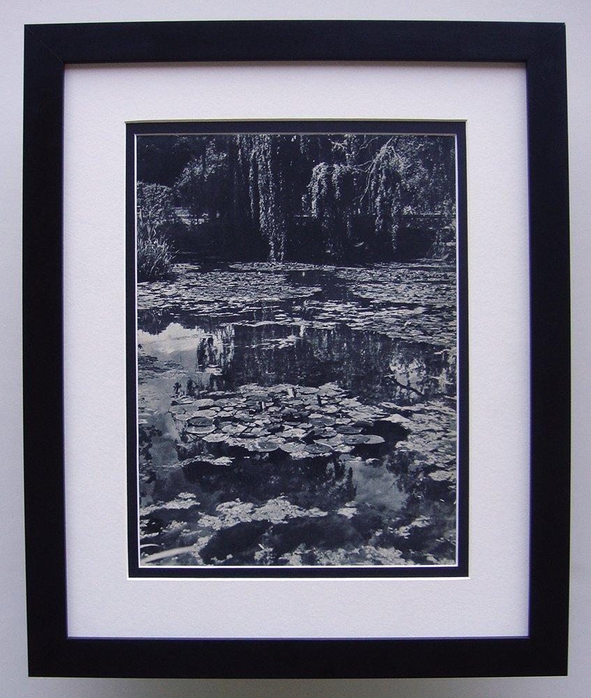 Monet's Garden photogravure framed