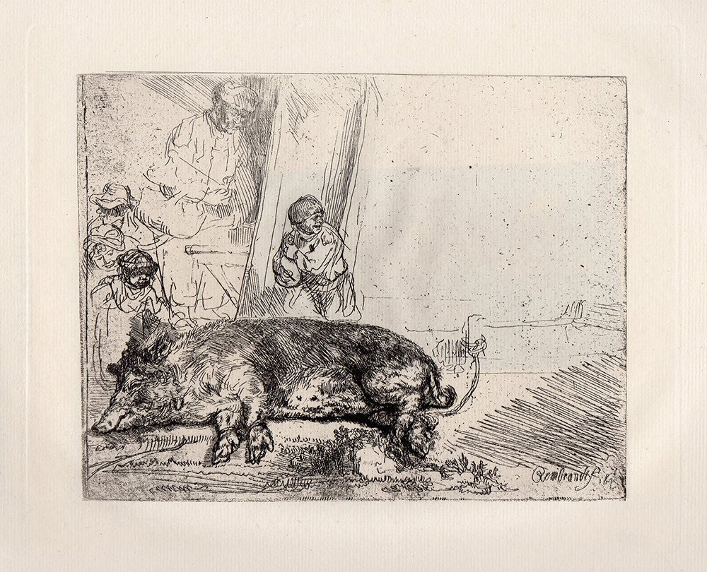 Rembrandt  The Hog etching 1800's
