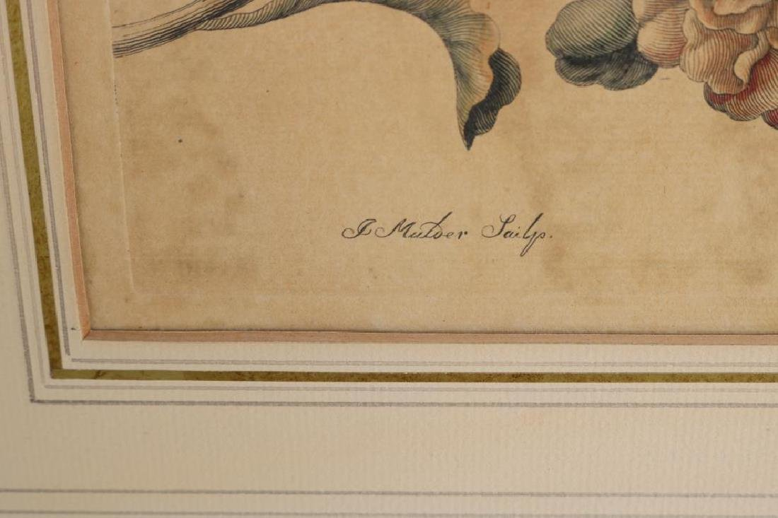 2 MATTED HAND COLORED ENGRAVINGS ATTRIBUTED TO - 4