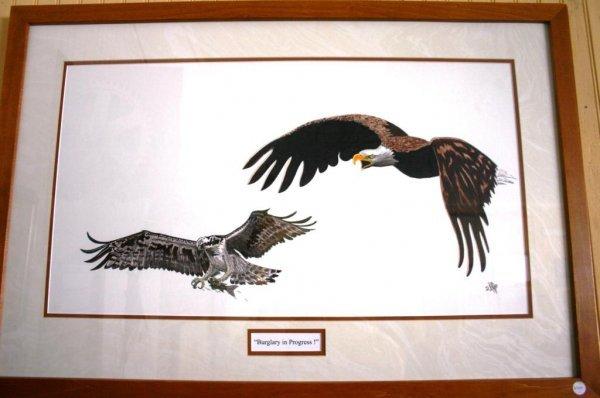 "11: FRAMED & GLAZED BIRD OF PREY PRINT TITLE ""BURGLARY"