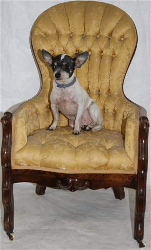 VICTORIAN WALNUT CHILD'S SIZE PARLOR CHAIR,