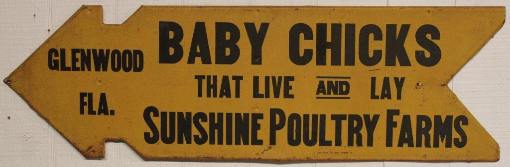 LITHO TIN BABY CHICK ADVERTISING SIGN,